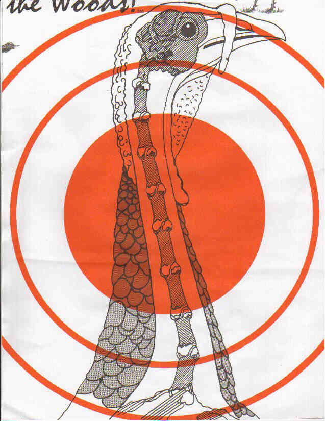 photo about Printable Turkey Targets known as Paper turkey aims! - Boards