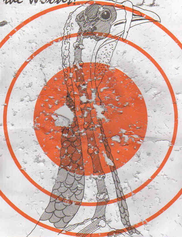 It's just a picture of Exceptional Turkey Shoot Targets Printable